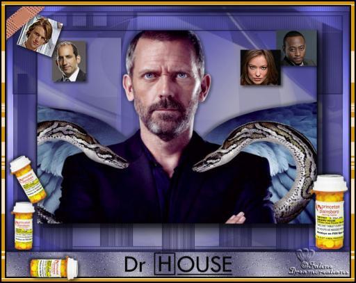Dr greg house