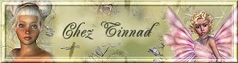 Tinnad